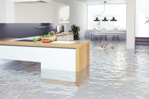 Water and Flood Damage Restoration West Hills CA